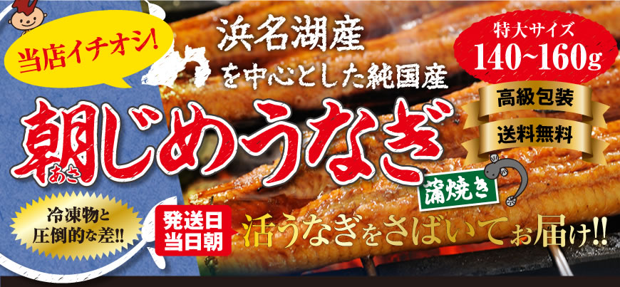 当店イチオシ!浜名湖産を中心とした純国産朝じめうなぎの蒲焼き。発送日当日の朝に活きウナギをさばいてお届けします。高級包装・送料無料です。