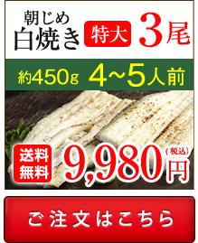 浜名湖産朝じめうなぎ蒲焼き3尾値段