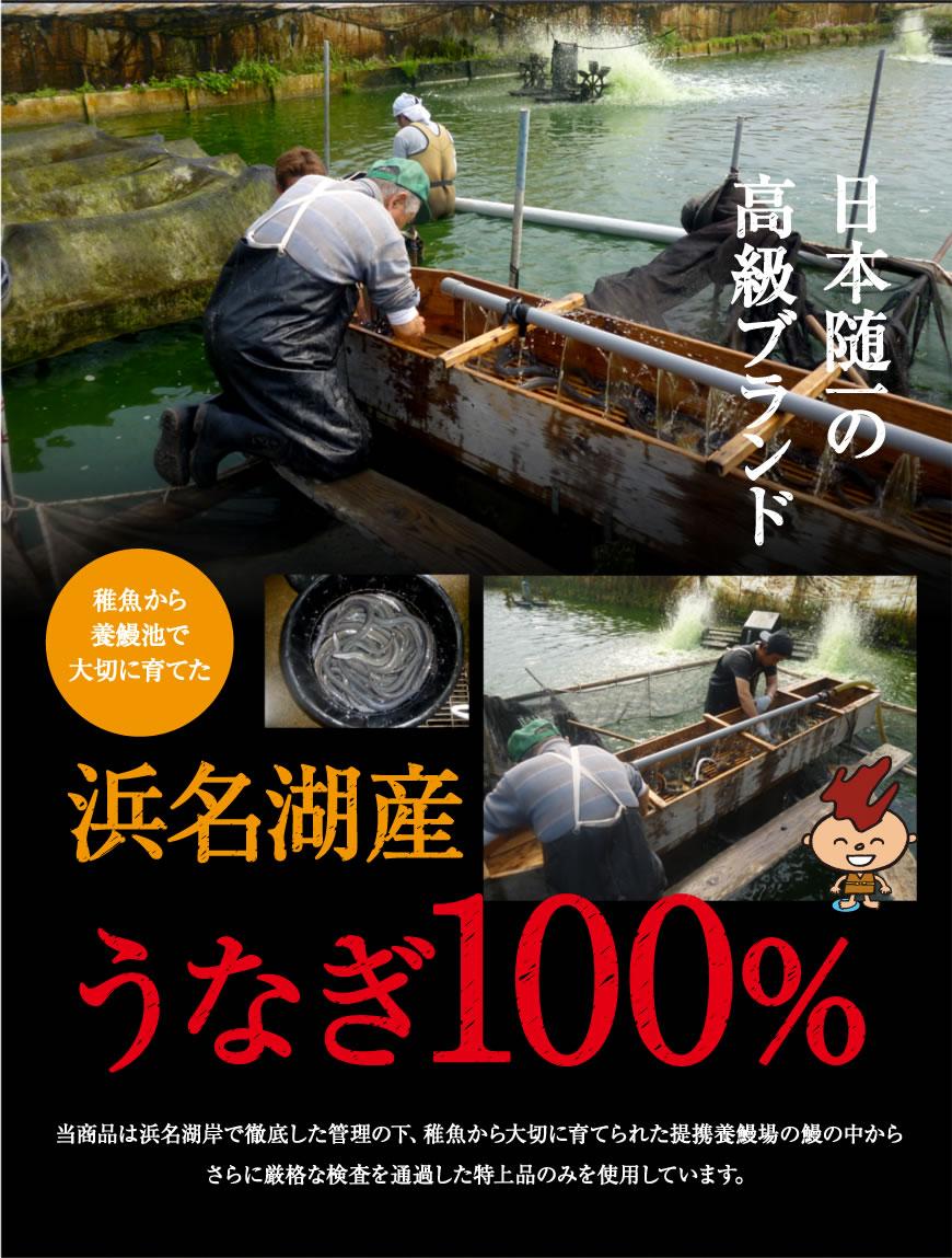 日本随一の高級ブランド浜名湖うなぎ100%。稚魚から浜名湖で大切に育てます。