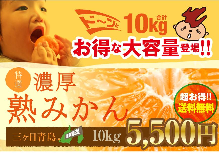 三ヶ日青島濃厚熟みかん10kg