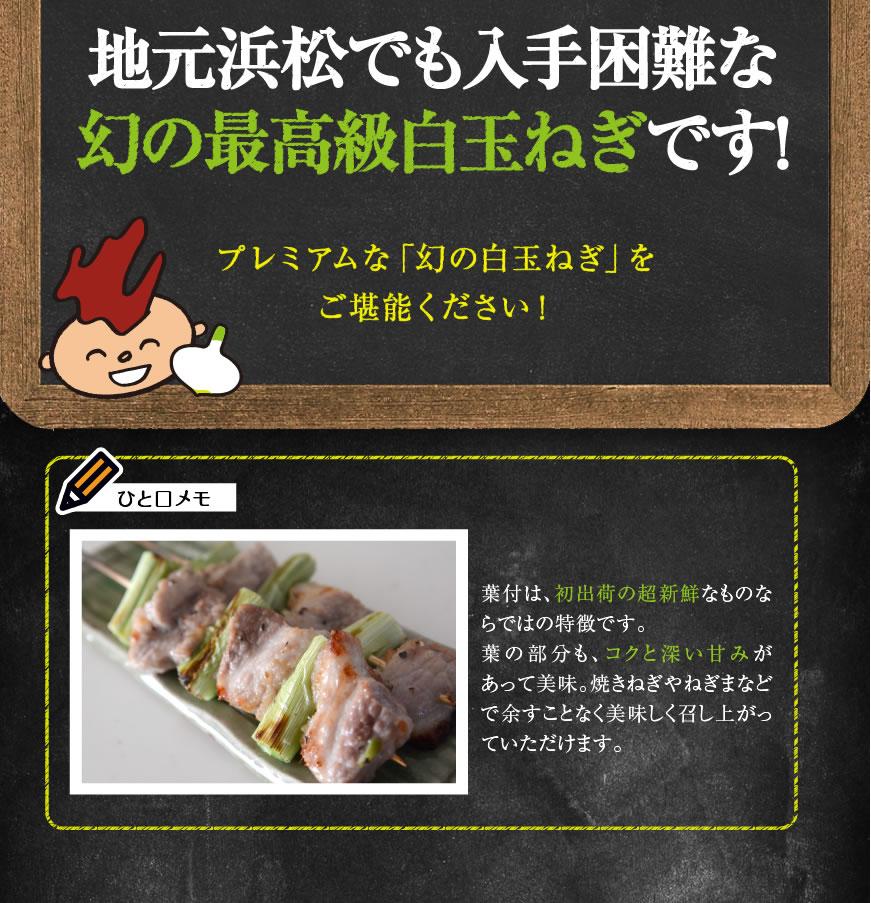 浜松篠原産の白玉ねぎ・サラダオニオン・ホワイトオニオン