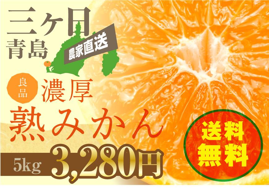 三ヶ日青島濃厚熟みかん5kg