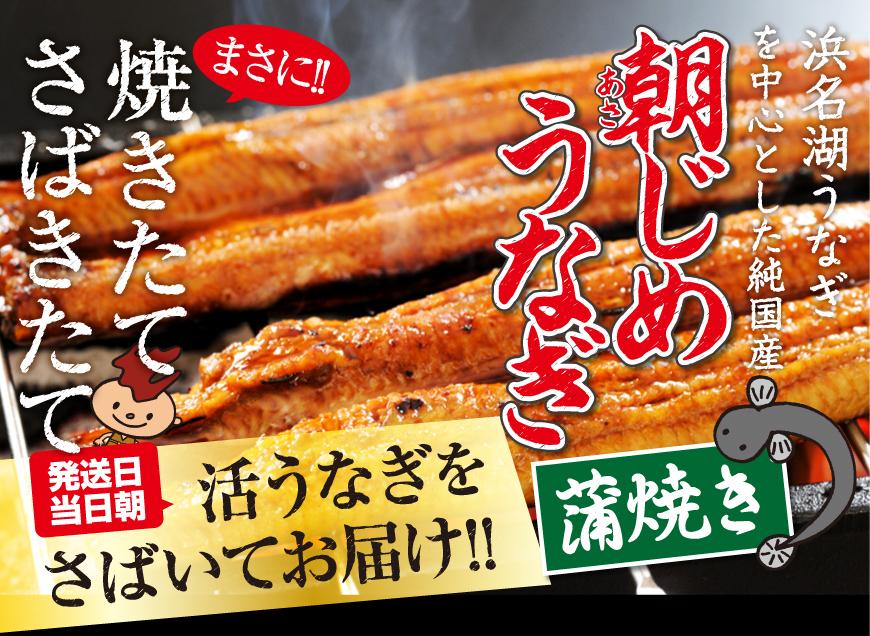 浜名湖産直朝じめうなぎ蒲焼きをお取り寄せください。送料無料です。