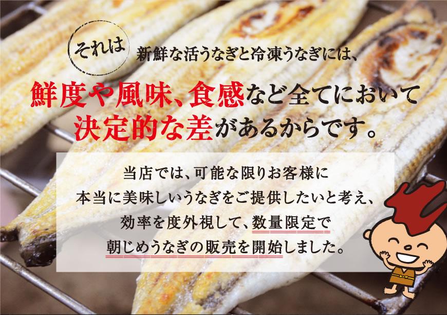 鰻屋で冷凍が使われない理由は鮮度や風味触感において決定的な差があるから。当店では数量限定で美味しい朝じめうなぎの販売を開始しました。