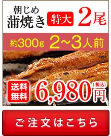浜名湖産朝じめうなぎ蒲焼き2尾値段。送料無料でお取り寄せ。