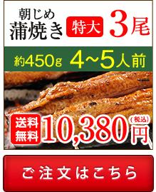 浜名湖産朝じめうなぎ蒲焼き3尾値段。送料無料でお取り寄せ。