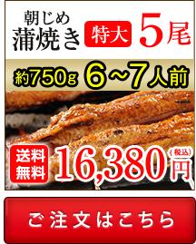 浜名湖産朝じめうなぎ蒲焼き5尾値段。送料無料でお取り寄せ。