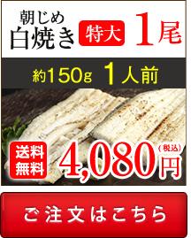 浜名湖産朝じめうなぎ蒲焼き1尾値段