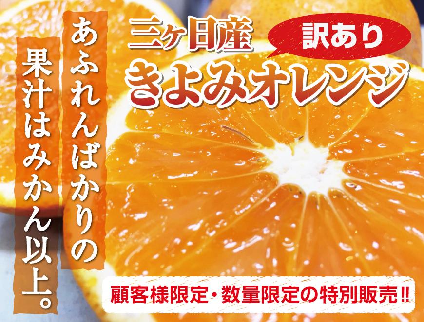 三ヶ日産清美オレンジ