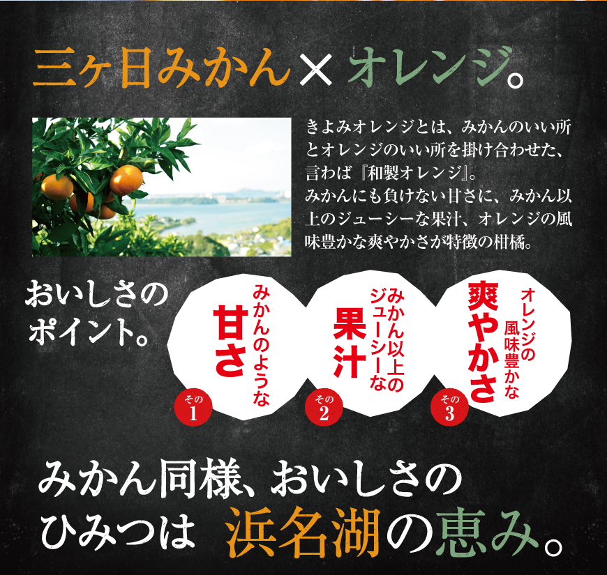 清美オレンジのおいしさの特徴