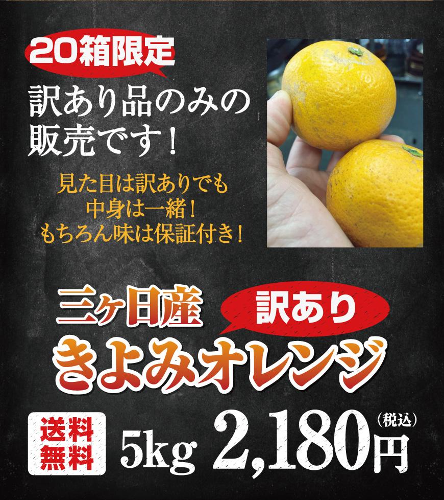 三ヶ日産清美オレンジ5キロ