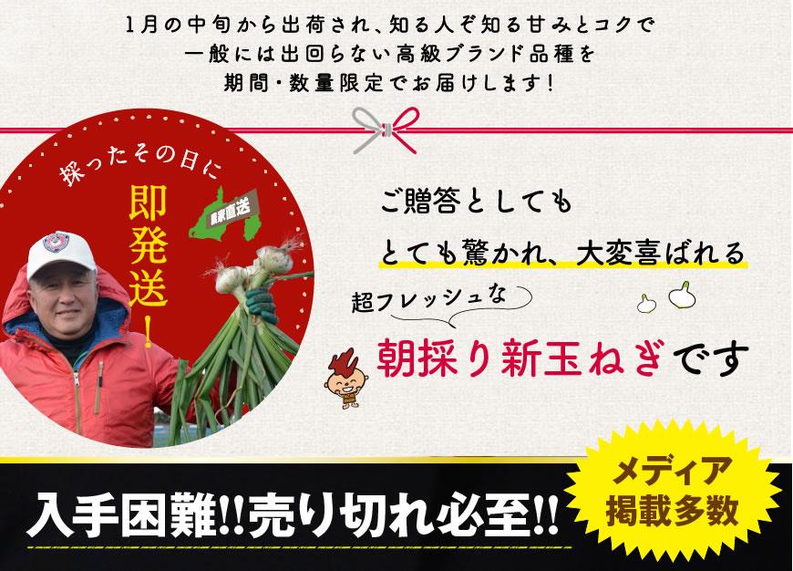 新玉ねぎ 浜松篠原産プレミアムフレッシュ