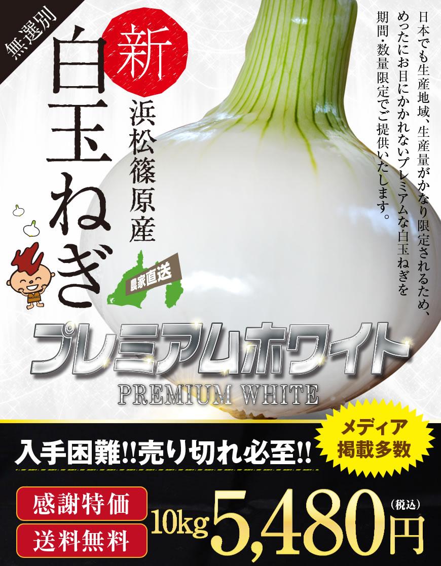 白玉ねぎ 浜松篠原産プレミアムホワイト