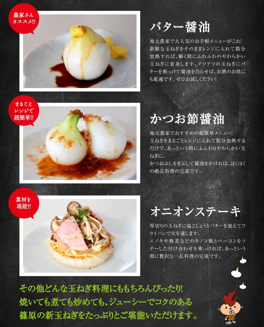 バター醤油・かつお節醤油・オニオンステーキ