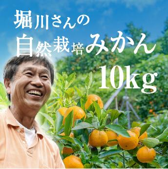 堀川さんの無農薬みかん 10kg