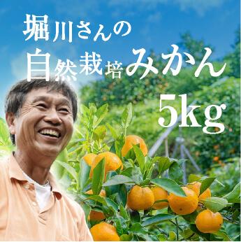 堀川さんの無農薬みかん 5kg