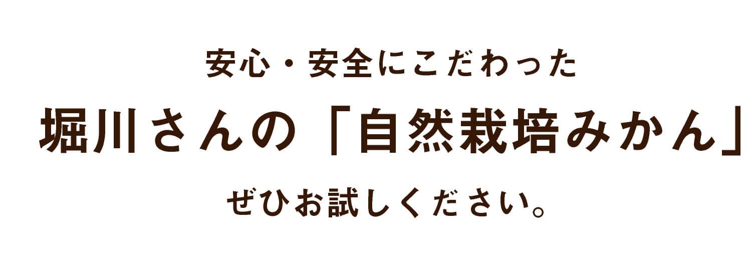 安心・安全にこだわった堀川さんの「無農薬みかん」ぜひお試しください。
