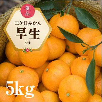 """""""三ケ日みかん早生5kg"""
