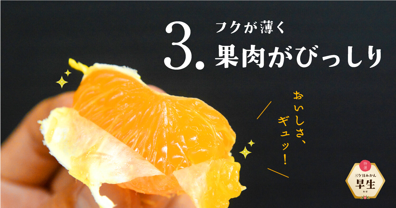 """""""三ケ日みかん早生"""
