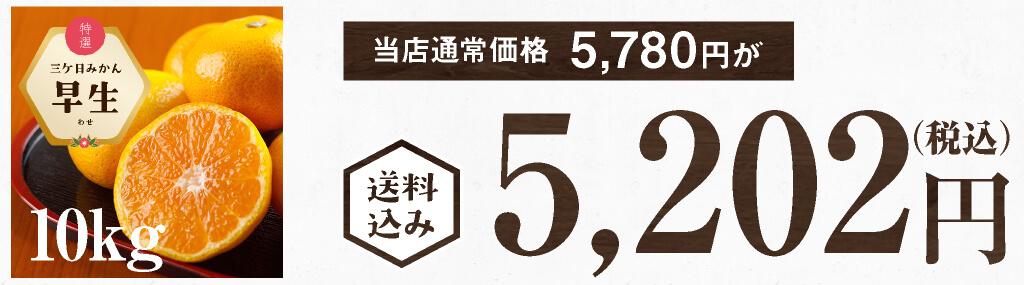"""""""三ケ日みかん早生10kg"""