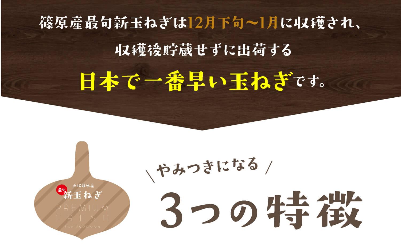 篠原産最旬新玉ねぎは12月下旬〜1月に収穫され、収穫後貯蔵せずに出荷する日本で一番早い玉ねぎです。新玉ねぎ やみつきになる3つの特徴