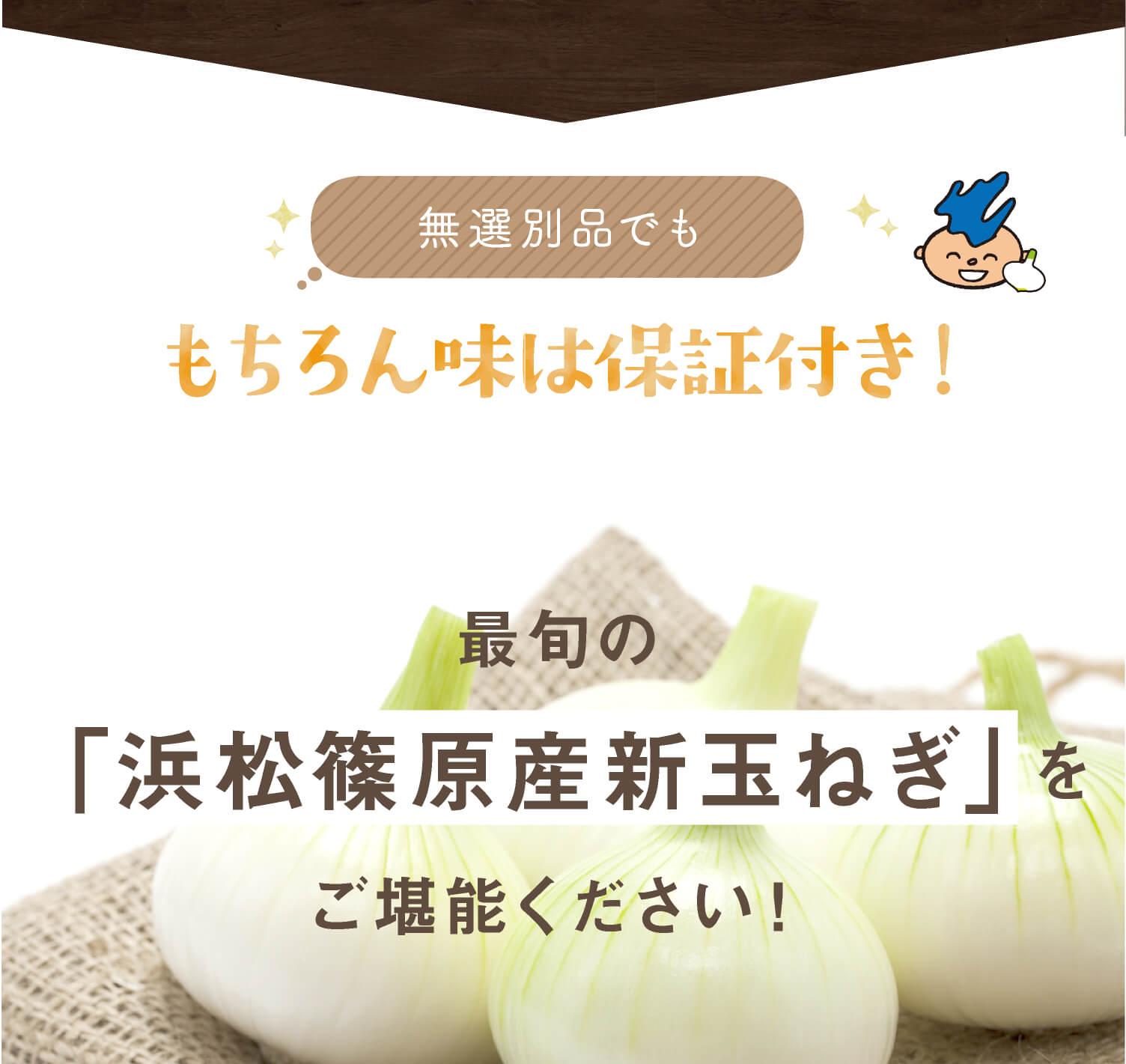 無選別品でももちろん味は保証付き!最旬の「浜松篠原新玉ねぎ」をご堪能ください!
